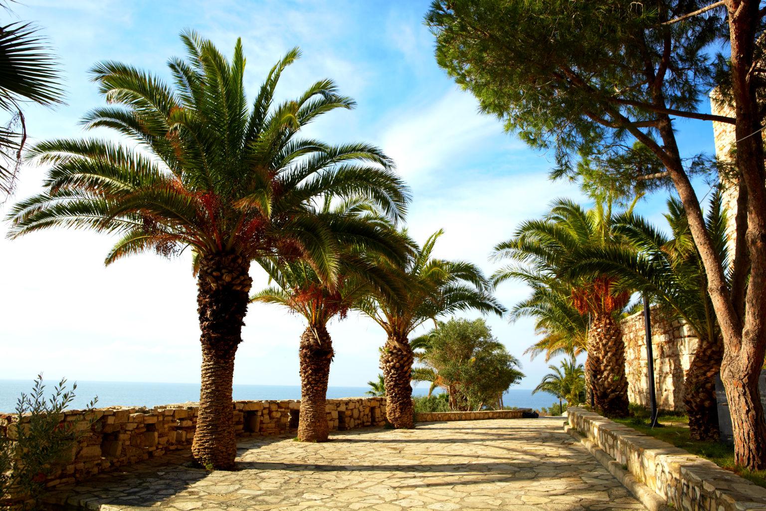Davutlar Otelleri
