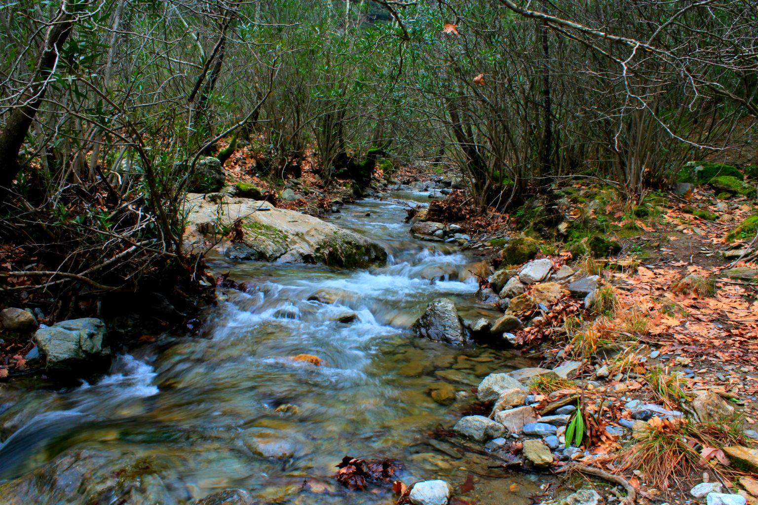 Bal�ova Otelleri