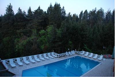 A�va Orman Evleri - Forest Lodge