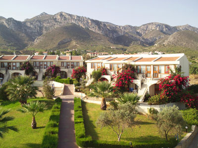 Dedeman Olive Tree Vacation